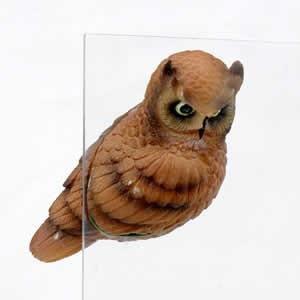 Horned Owl FTO4