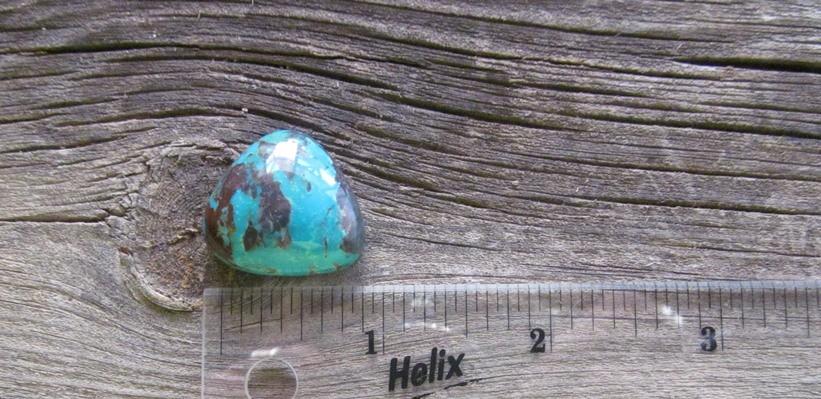 Bisbee Turquoise Stone BTS20