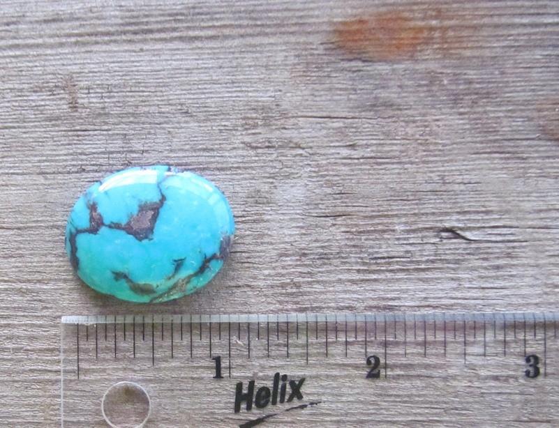 Bisbee Turquoise Stone BTS27