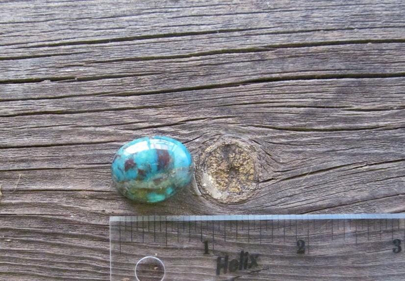 Bisbee Turquoise Stone BTS34