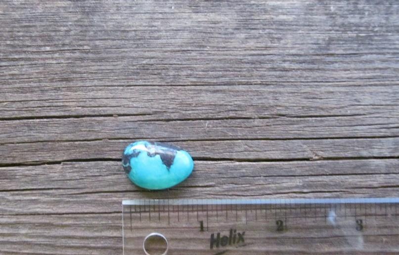 Bisbee Turquoise Stone BTS40