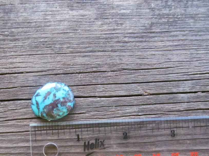Bisbee Turquoise Stone BTS42