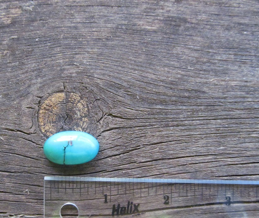 Bisbee Turquoise Stone BTS50