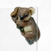 Koala Bear FTO2