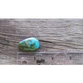 Bisbee Turquoise Stone BTS18
