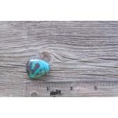 Bisbee Turquoise Stone BTS23