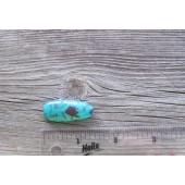 Bisbee Turquoise Stone BTS24