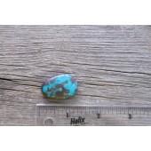Bisbee Turquoise Stone BTS25