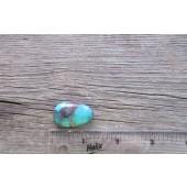 Bisbee Turquoise Stone BTS26