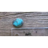 Bisbee Turquoise Stone BTS31