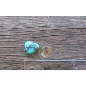 Bisbee Turquoise Stone BTS33