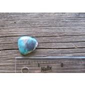 Bisbee Turquoise Stone BTS35