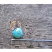 Bisbee Turquoise Stone BTS52