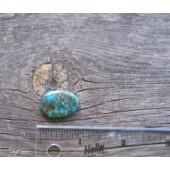 Bisbee Turquoise Stone BTS53