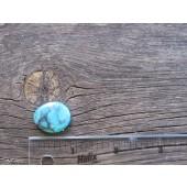 Bisbee Turquoise Stone BTS54