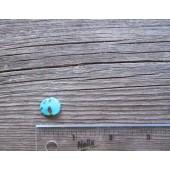 Bisbee Turquoise Stone BTS58