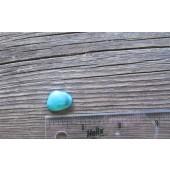 Bisbee Turquoise Stone BTS59